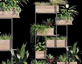 3D model Plant set 12