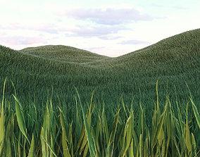 Grass Low Poly 2 3D asset