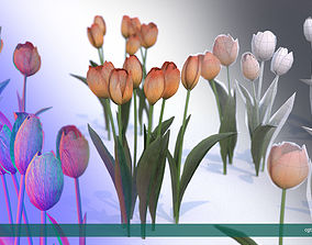3D model Tulips very LOW POLY detailed textures 1