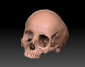 skull ring anatomically correct 3D print model