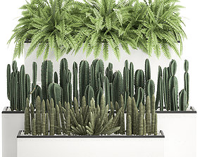 3D model Decorative plants for the interior in a white 1