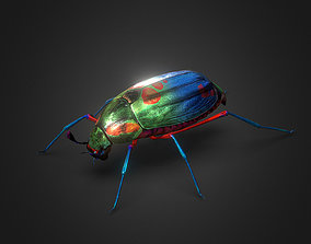 3D model realtime Bug Indian Jewel Beetle PBR VR