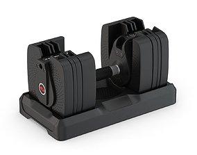 Bowflex SelectTech 560 Dumbbells 3D model