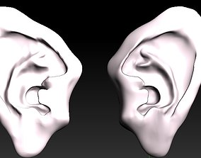 character ears ear 3d model the rigged