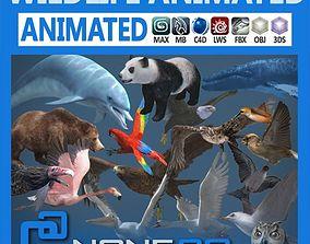 Pack - Wildlife 3D