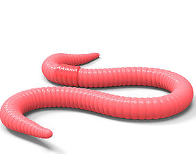 3D model Worm Red