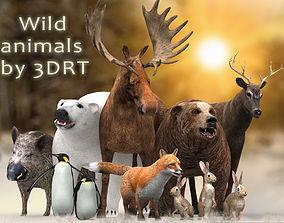 animated 3DRT - Wild Animals