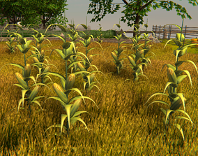 Corn Plant Game Ready 3D asset