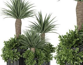 Collection plant vol 108 3D