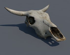 skull animal 3D model