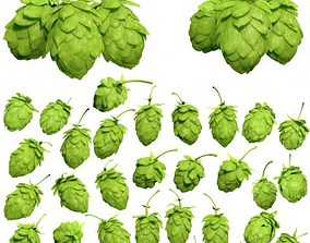 Hops 3d Models Package High Poly Photorealistic
