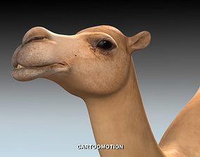 Adult Camel 3D model