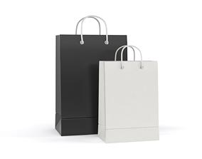 3D Paper Shopping Bags