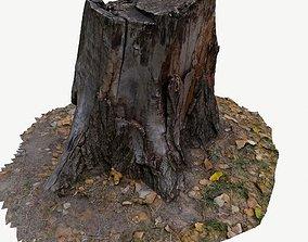 low-poly 3D scan BPR tree stump 03