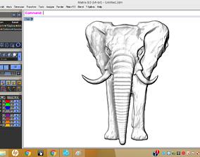 Elephants 3D