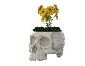 3D printable model Skull Vase