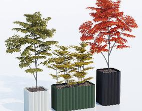 3D Tess Planter