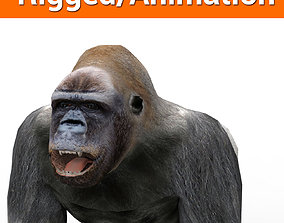 animated 3D Model Gorilla Animated and Rigged