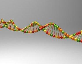 DNA model 3D