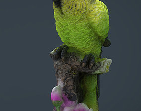 3D model Green Parrot