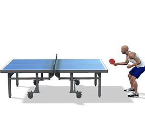 3D model Tennis Table- Ping Pong Table