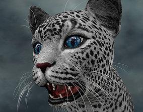 UVWC-011 Cat textures only 3D