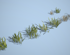 Vegetation Pack 03 3D asset VR / AR ready