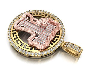 3D print model Cobra and Anaconda snake T pendant