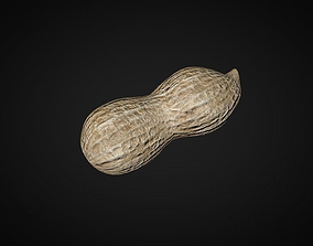 3D halved peanut