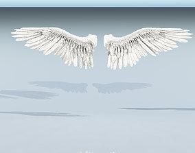 3D Angel or bird wings