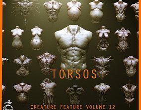 TORSOS - 33 Character and Creature Insert meshes 3D