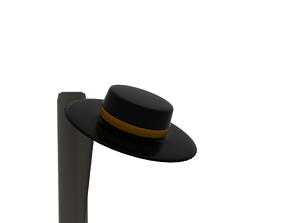 3D model The Hat
