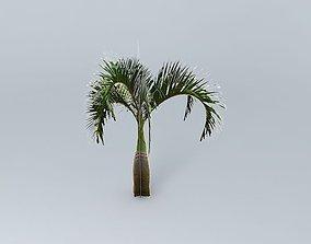 3D Bottle Palm Tree