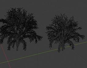 Fantasy Trees 3D