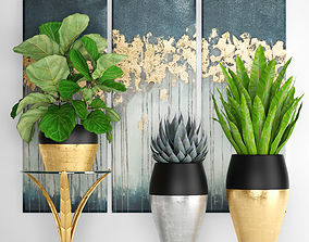 collection luxury plants 3D model