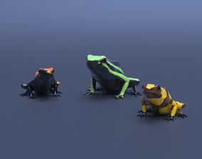 Poison Dart Frogs v3 - Package 3D model