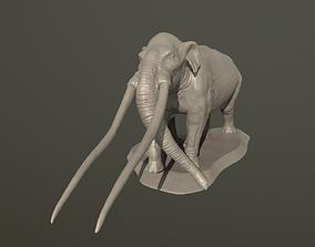 Anancus arvernensis 3D printable model anancus