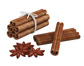Cinnamon sticks and anise 3D model
