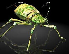 3D asset Insect Collection 4 aphids