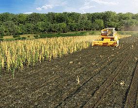 3d scene corn agricultural field