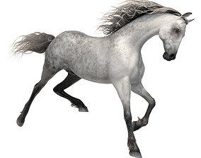 animal 3D model realtime Horse