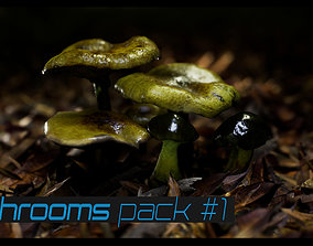Mushrooms pack 1 3D asset
