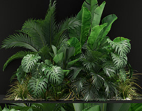 3D model Plants collection 357