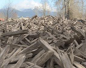 3D model Pile of Wood - A