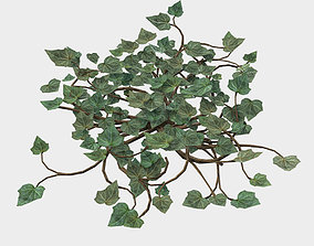 3D model Low Poly Game Ready IVY