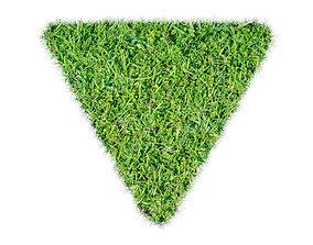 Grass Rectangular Triangular Curved 3D model
