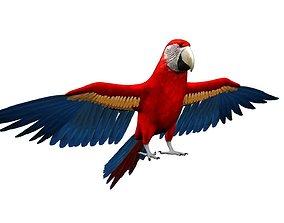 3dmacaw 3D Macaw