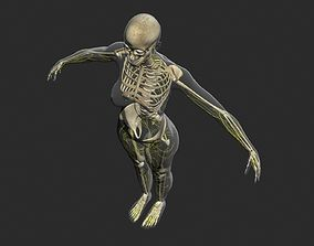 Central Nervous System with Skeleton Female 3DSmax