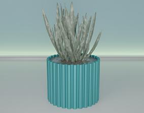 3D printable model succulent plant pot 36