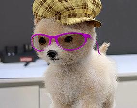 Poodle cute 3D model
